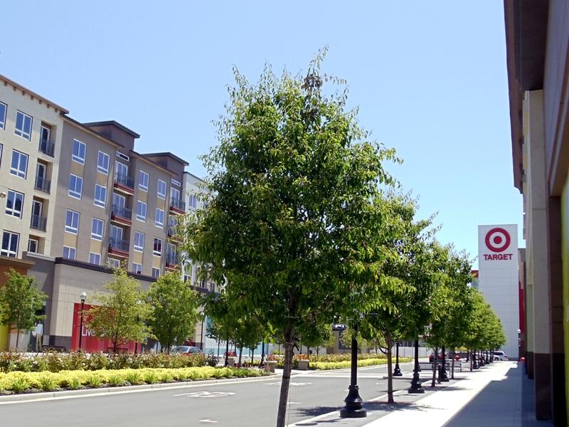 Sunnyvale-Town-Center-stc05.jpg